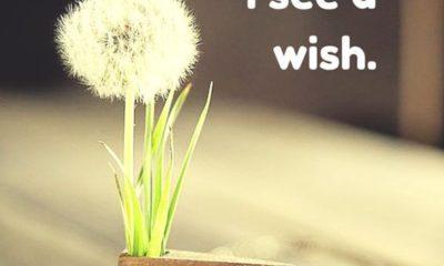 I See A Wish