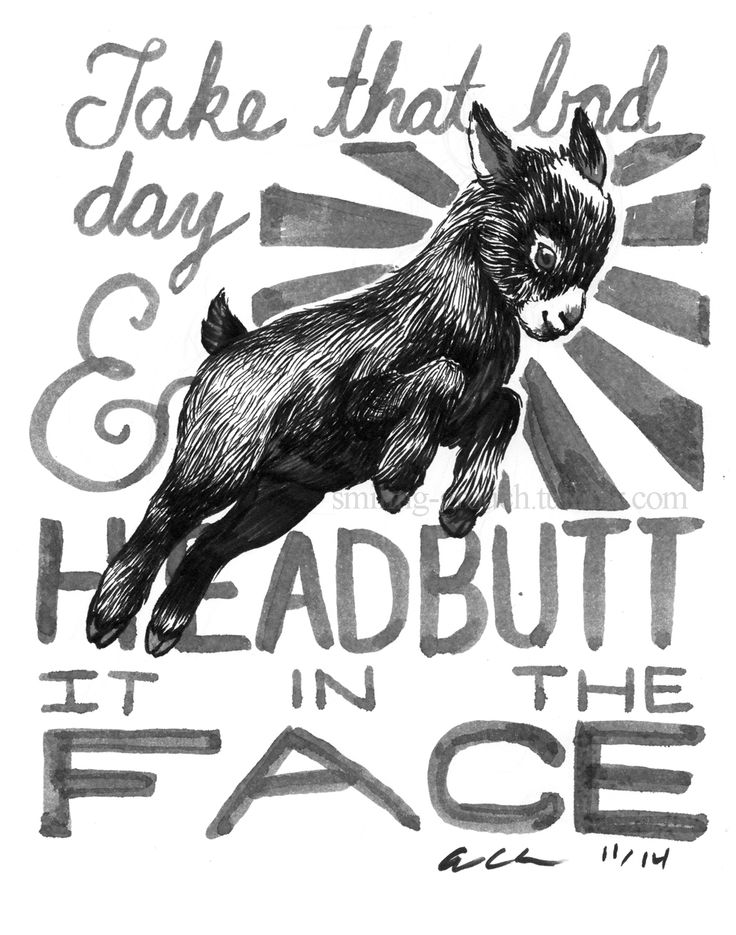 advice from a goat word porn quotes love quotes life quotes