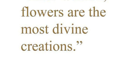 Most Divine Creations