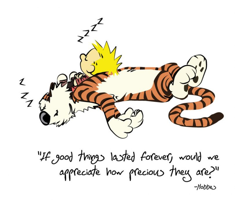If good things lasted forever , would we appreciate how precious they are? - Hobbes