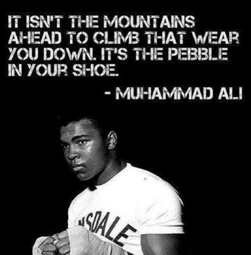 It isn't the mountains ahead to climb that wear you down. It's the pebble in your shoe. - Muhammad Ali