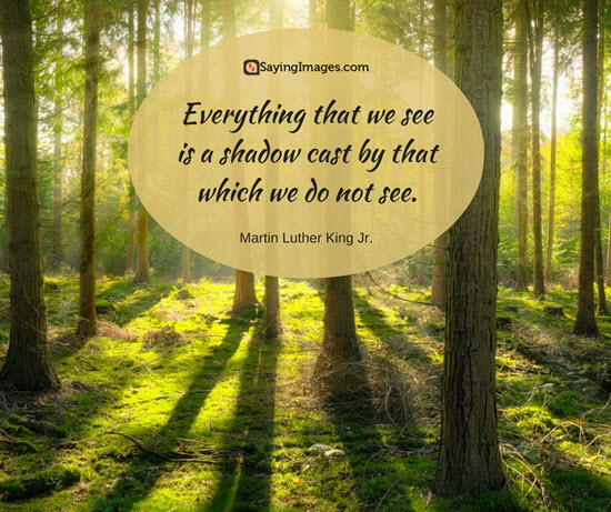 quotes by dr martin luther king