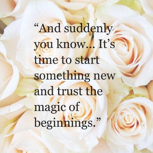 1484237737 262 New Beginnings
