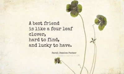 1484810575 233 A Best Friend