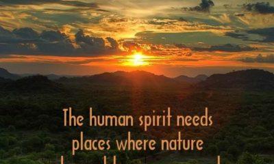 1485199582 578 The Human Spirit