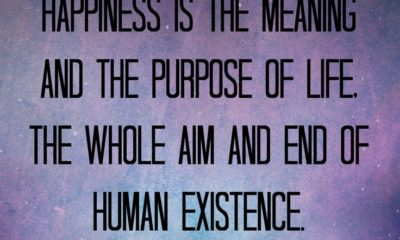 1485226330 615 The Purpose Of Life