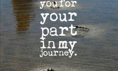 1485235243 858 My Journey