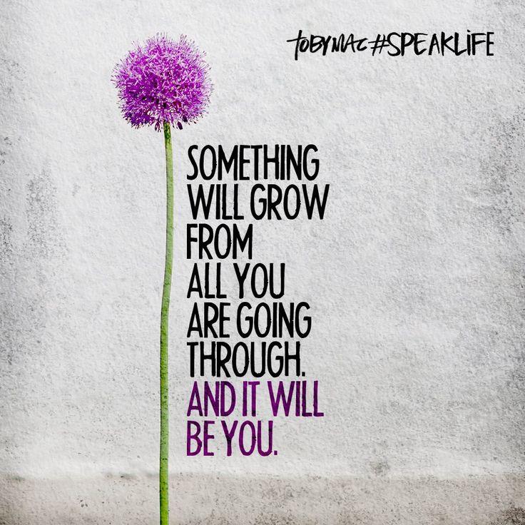 1485303449 101 Something Will Grow