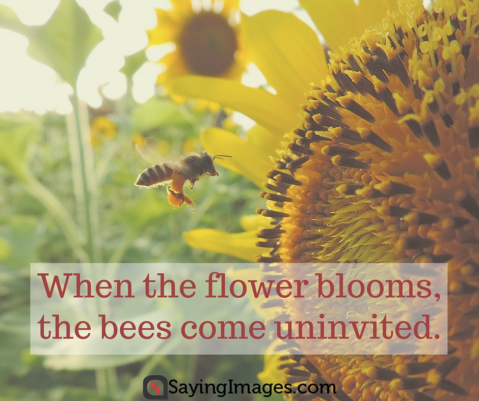 quotations on flowers