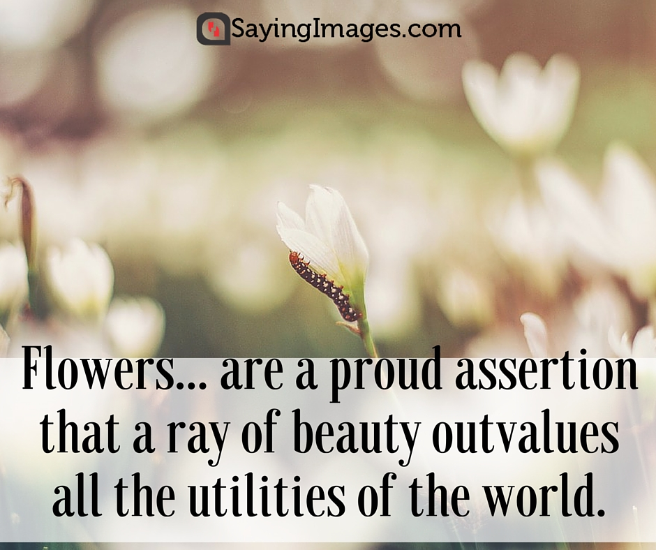 flowers with quotes