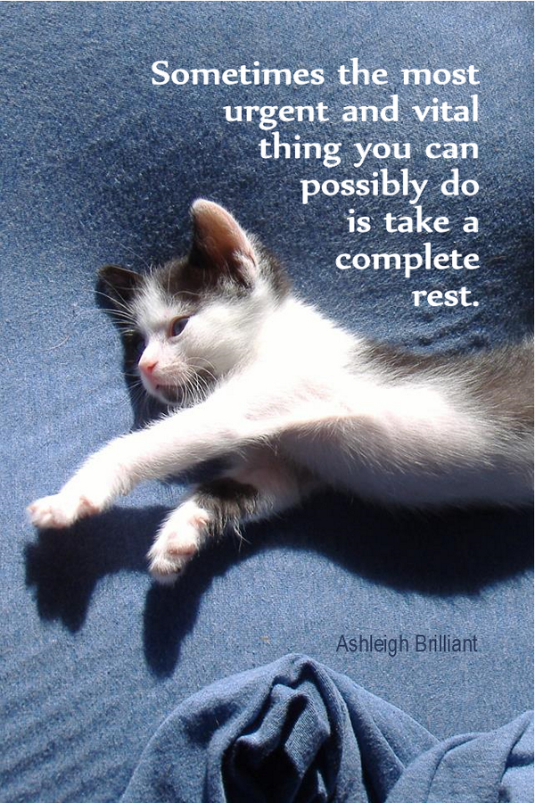 A Complete Rest