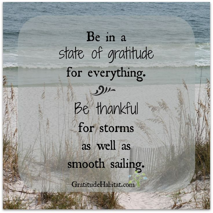 Be in a state of gratitude for everything. Be thankful for storms as well as smooth sailing.