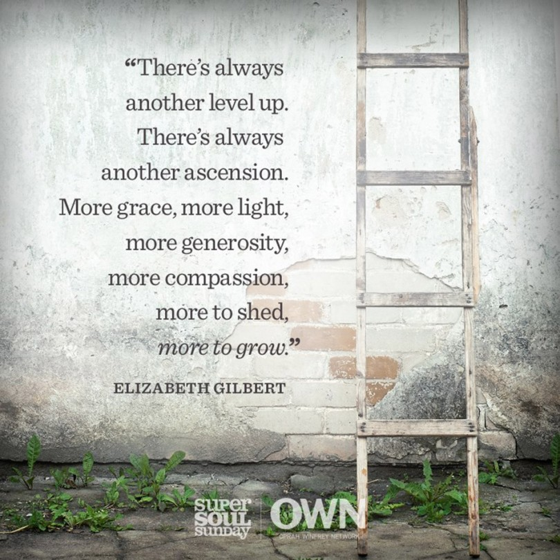 There's always another level up. There's always another ascension. More grace, more light, more generosity, more compassion, more to shed, more to grow. - Elizabeth Gilbert