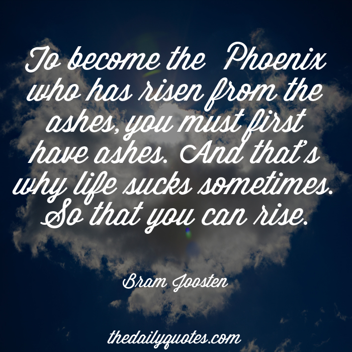 To become the Phoenix who has risen from the ashes, you must first have ashes. And that's why life sucks sometimes. So that you can rise. - Bram Joosten