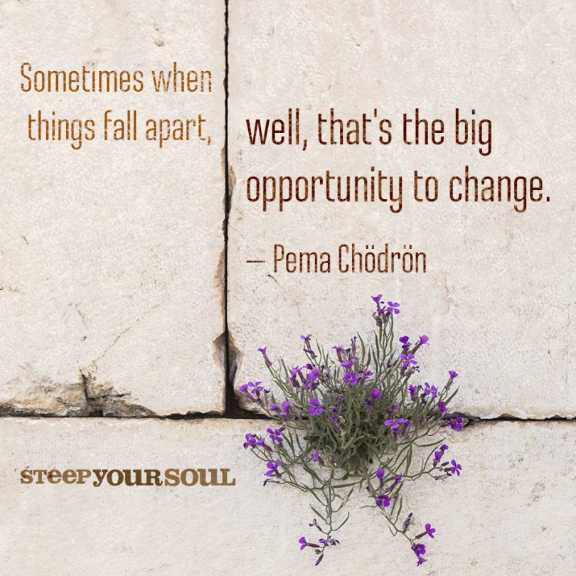 Sometimes when things fall apart, well, that's the big opportunity to change. - Pema Chödrön