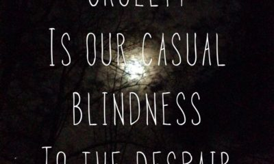 Casual Blindness