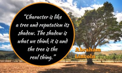 Character Is Like A Tree