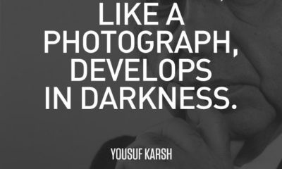 Develop In Darkness