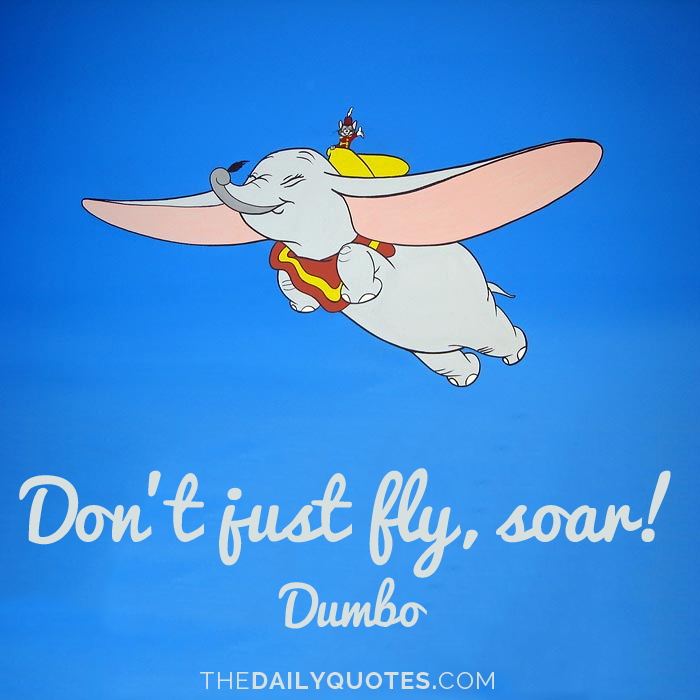 Dont Just Fly