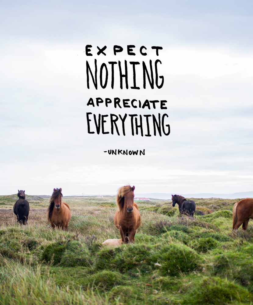 Expect Nothing Life Daily Quotes Sayings Pictures