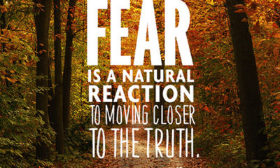 Fear Is A Natural Reaction