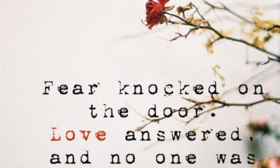 Fear Knocked On The Door