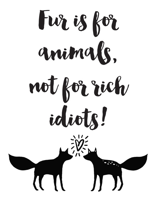 Fur Is For Animals