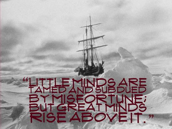 Little minds are tamed and subdued by misfortune; but great minds rise above it.