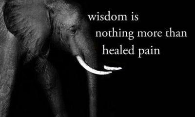 Healed Pain