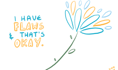 I Have Flaws