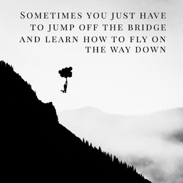 Sometimes you just have to jump off the bridge and learn to fly on the way down.