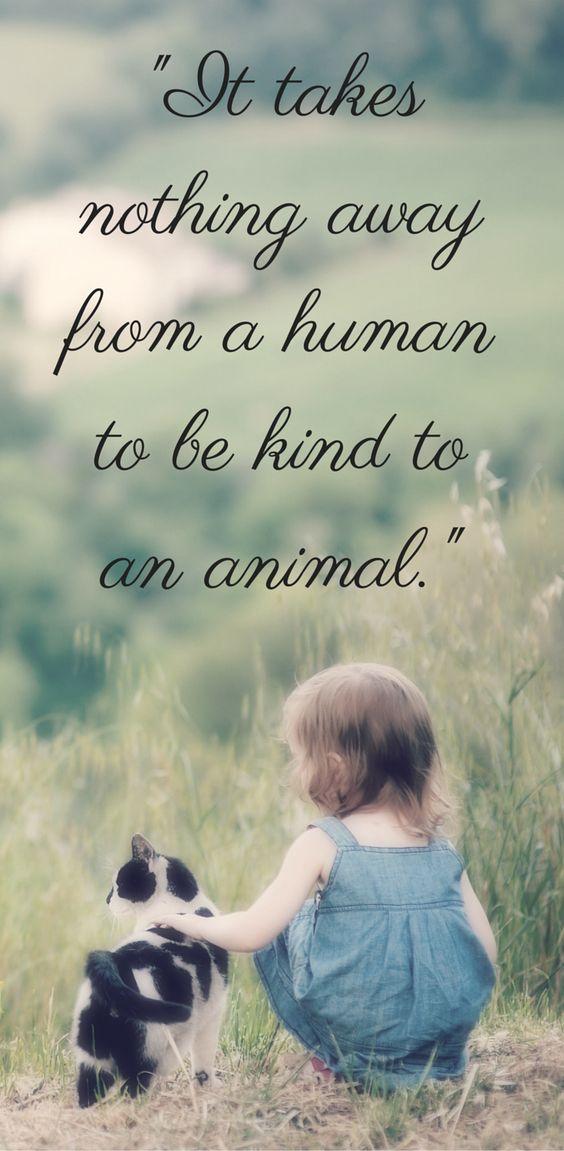 Kind To An Animal