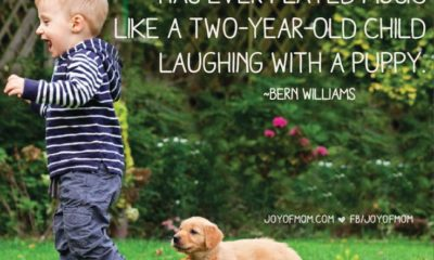 Laughing With A Puppy