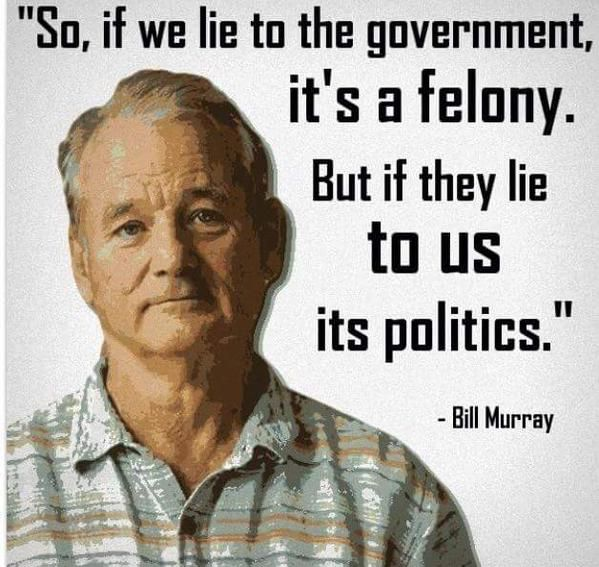 Lie To The Government Word Porn Quotes Love Quotes Life