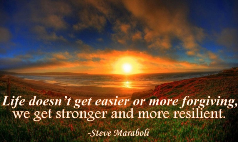 Life doesn't get easier or more forgiving, we get stronger and more resilient. - Steve Maraboli