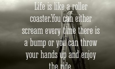 Life Is Like A Roller Coaster