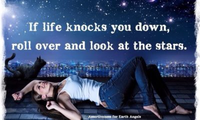 Life Knocks You Down