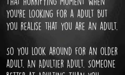 Looking For An Adult