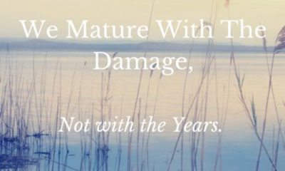 Mature With The Damage
