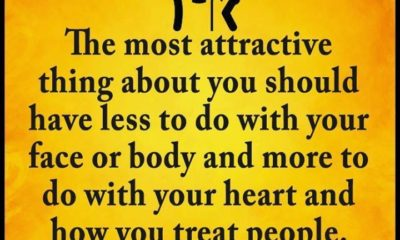 Most Attractive Thing