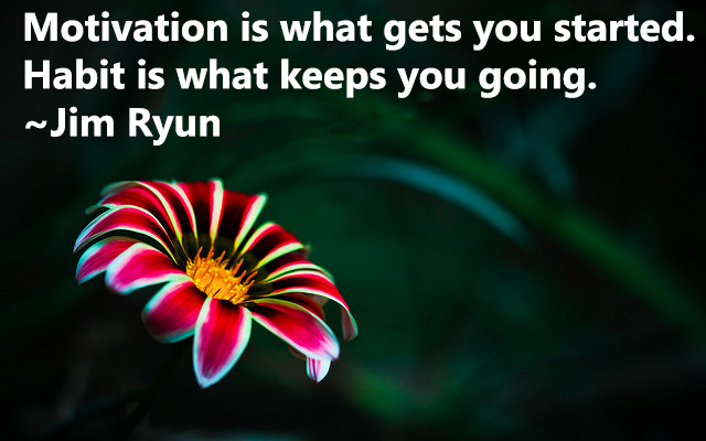Motivation is what gets you started. Habit is what keeps you going. - Jim Ryun