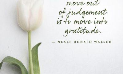 Move Into Gratitude