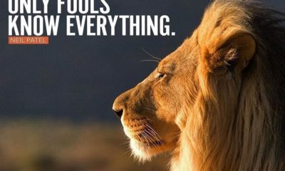 Only Fools Know Everything