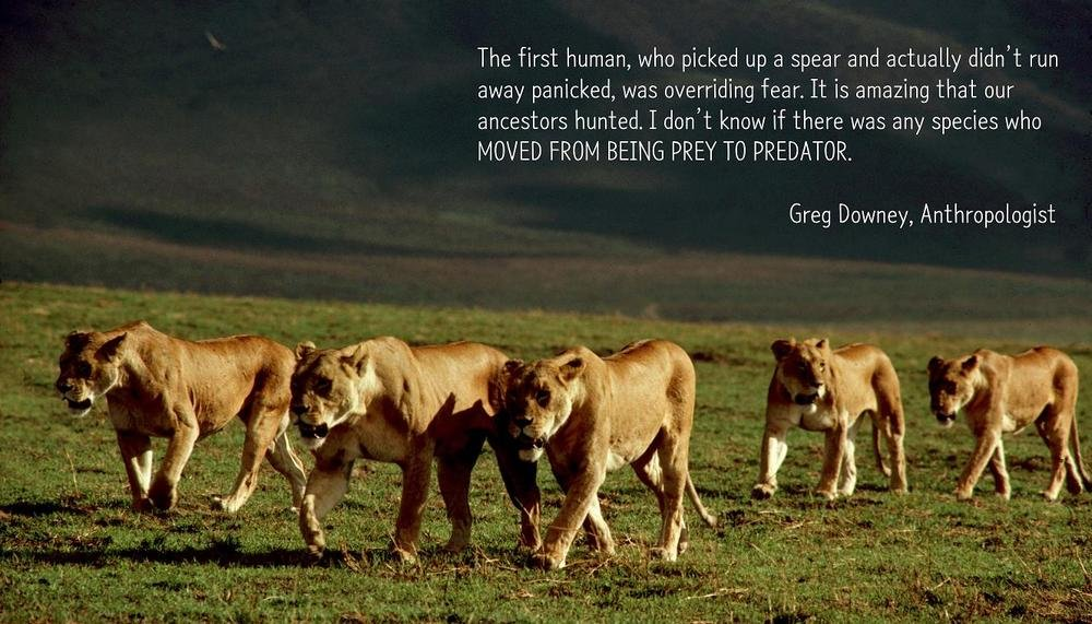 Prey To Predetor Greg Downey Daily Quotes Sayings Pictures