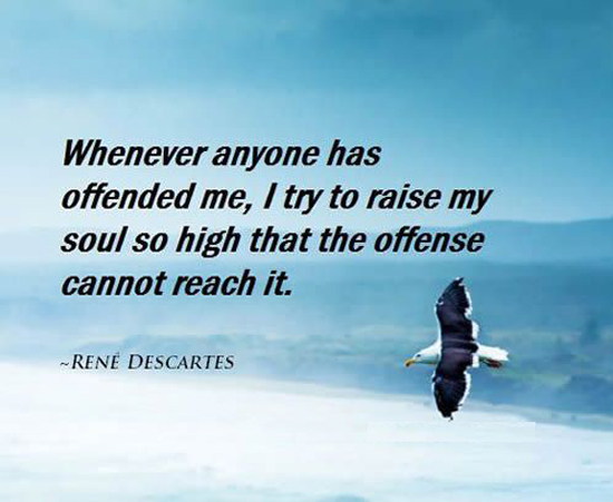 Whenever anyone has offended me, I try to raise my soul so high that the offense cannot reach it. - René Descartes