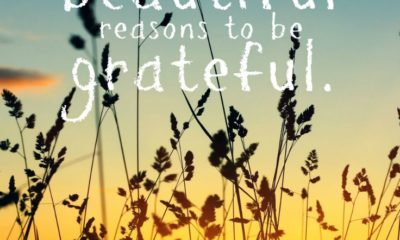 Reasons To Be Grateful