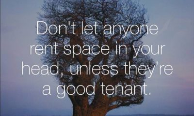 Rent Space Head Life Daily Quotes Sayings Pictures