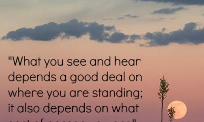 See And Hear