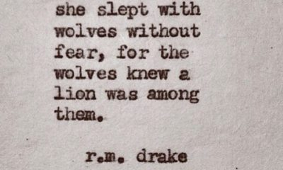 Slept With Wolves