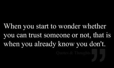 Start To Wonder